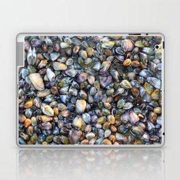 Sea Shells Low tide Laptop & iPad Skin