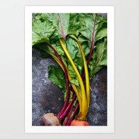 Rainbow Beets & Greens Art Print