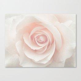 Blush Pink Rose Canvas Print