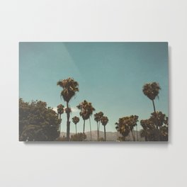 Palm trees before the mountain foot Metal Print