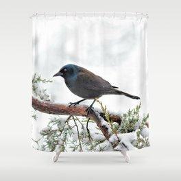 Snow Grackle Shower Curtain