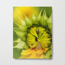 said the spider to the fly Metal Print