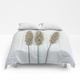 Summer Grass Comforters