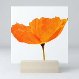 One And Only - Orange Poppy White Background #decor #society6#buyart Mini Art Print