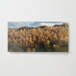 Larch Cottage Panorama Metal Print