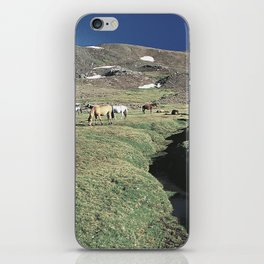 Wild horses 3000 meters hight iPhone Skin