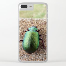 Iridescent  Green Beetles Clear iPhone Case