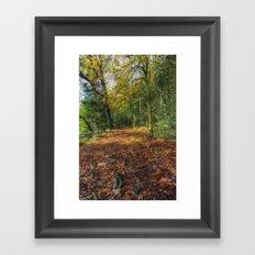 Autumn Forest Walks Framed Art Print