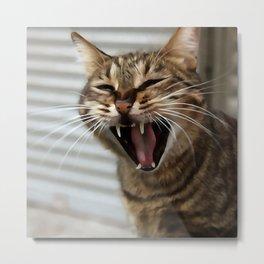 Tabby Cat Yawn Artistic Portrait Metal Print