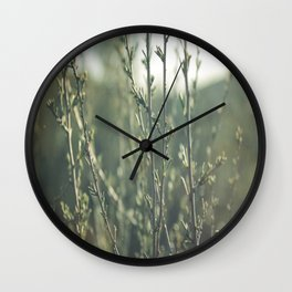 i don't stand a chance  Wall Clock