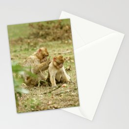 Grooming Practice Stationery Cards