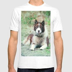 Greenland Dog White MEDIUM Mens Fitted Tee