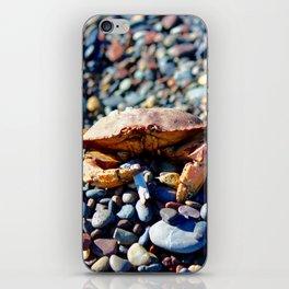 The Smoking Crab iPhone Skin