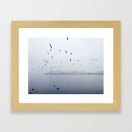 Birds Flying Over Lake Lugano Framed Art Print