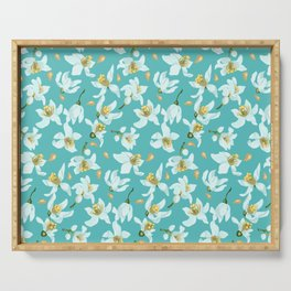 Citrus blooming tiny flowers in a sky blue backgrund Serving Tray