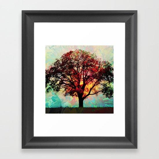 Fall Tree 2 Framed Art Print
