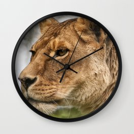 Josie the Lioness Wall Clock