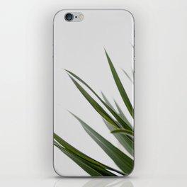 Botanical, Leaves iPhone Skin