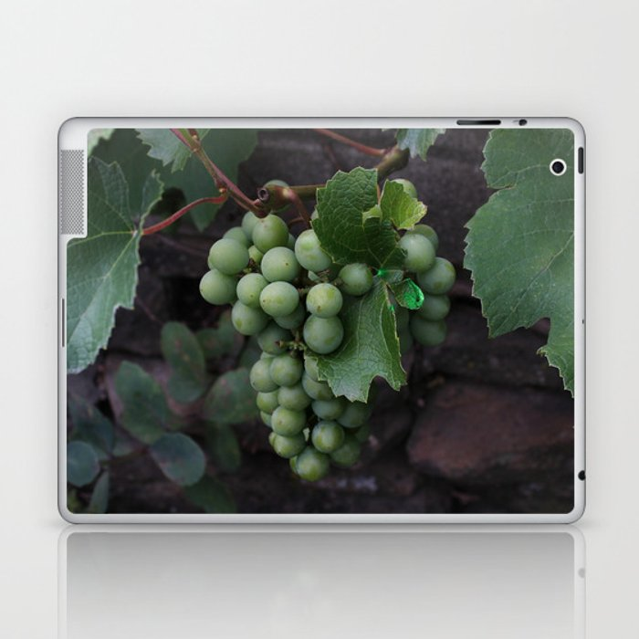 Grapevine Laptop & iPad Skin