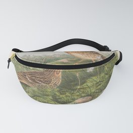 012 Red throated Pipit anthus cervinus4 Fanny Pack