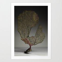 Purple Sea Fan III Art Print