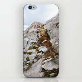 Desolation Mountainside iPhone Skin