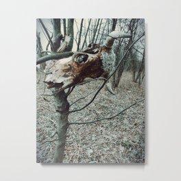 forest secret stories Metal Print
