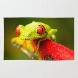 Red eye Frog Rug