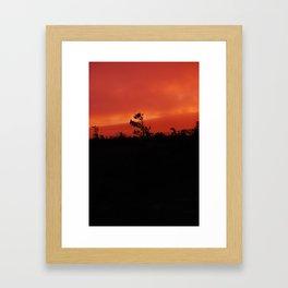 Solitary Tree Framed Art Print