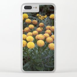 Little Treasures Clear iPhone Case