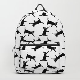 Cats on White Backpack