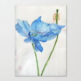 Blue North Canvas Print