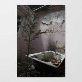 Bath Time... Canvas Print