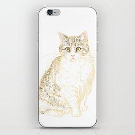 Plump Shorthair Tabby Cat iPhone Skin