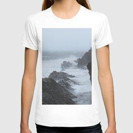 Shore Acres near Coos Bay, Oregon T-shirt