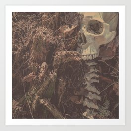 Catacomb Culture - Lost in the Woods Human Skull Art Print
