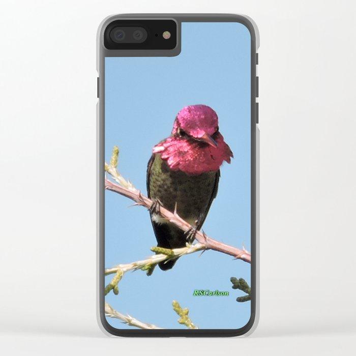 Mr. Anna's Hummingbird in Ideal Light Clear iPhone Case