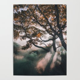 sunrays #society6 #decor #buyart Poster