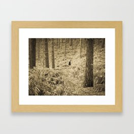 Peace in the forest Framed Art Print