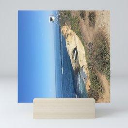 On Guard on the La Jolla Shoreline Mini Art Print