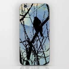 on a Winter's wing... iPhone & iPod Skin