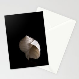 A spiral seashell is captured against a black background Stationery Cards