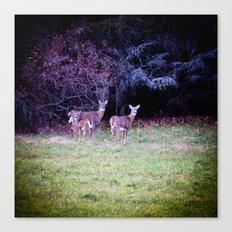 The Dear Deer Family Canvas Print