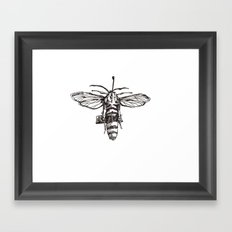 The Hornet Framed Art Print