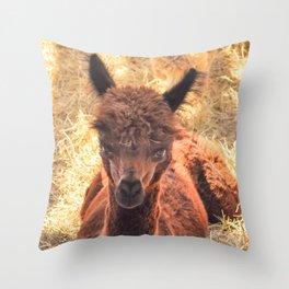 Llama Tude Throw Pillow