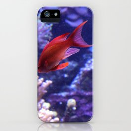 Lonely Fish iPhone Case