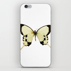 Butterfly #1 iPhone & iPod Skin