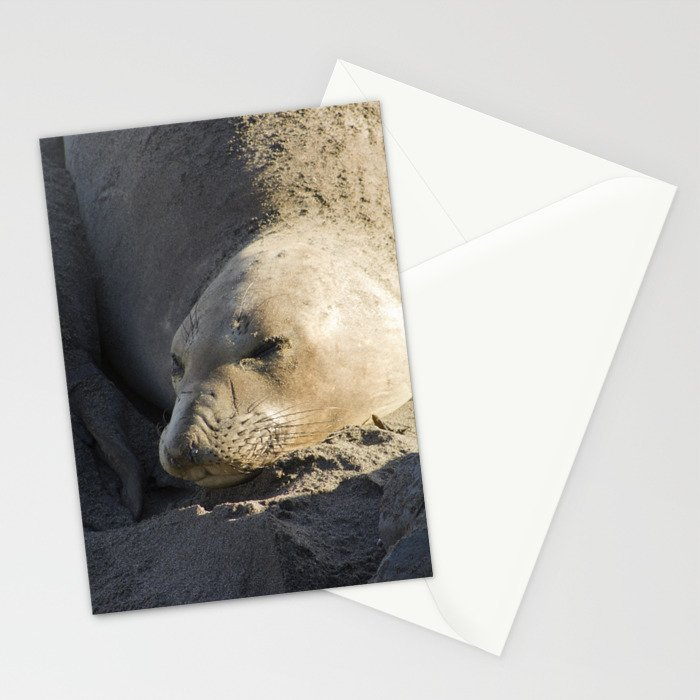 Elephant Seal: Contentment Stationery Cards