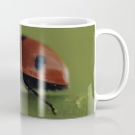 Ladybird on a Flower, macro photography, home, still life, fine art, animal love, nature photo Coffee Mug