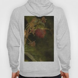 wild berries #5 Hoody
